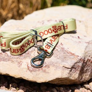 pub dog branded leash sitting on a rock